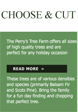 Perry Treelot Choose & Cut