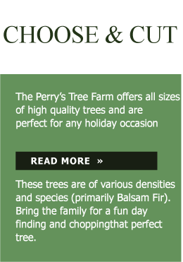 Perry Treelot Choose & Cut