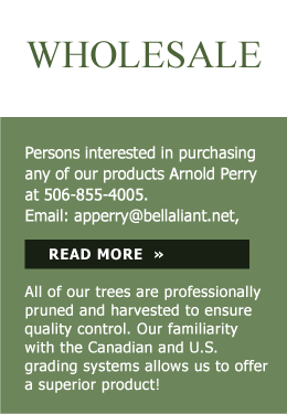 Perry Treelot Wholesale